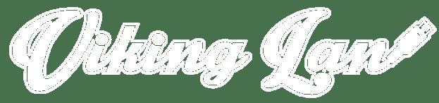 vikinlan logo
